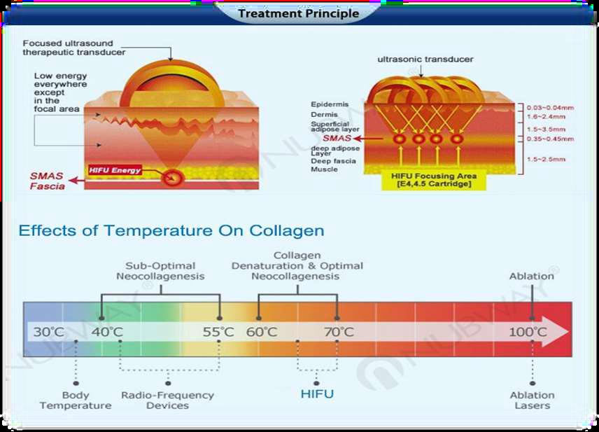 effetti collagene